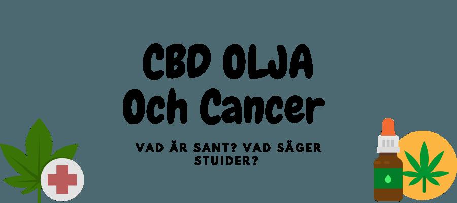 cbd olja och cancer - vad är sant?